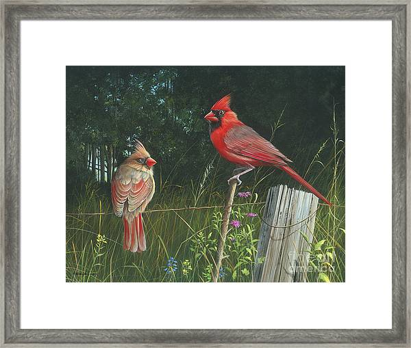 The Perfect Match Framed Print