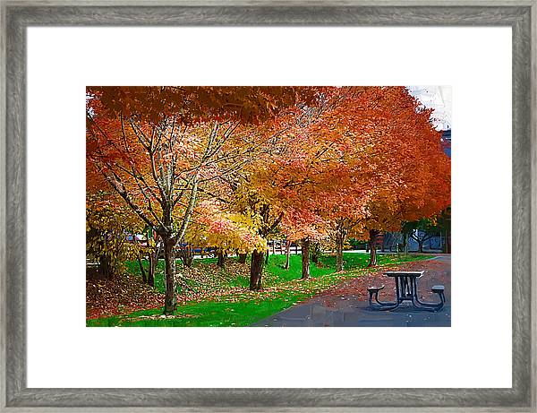 The Picnic Table Framed Print