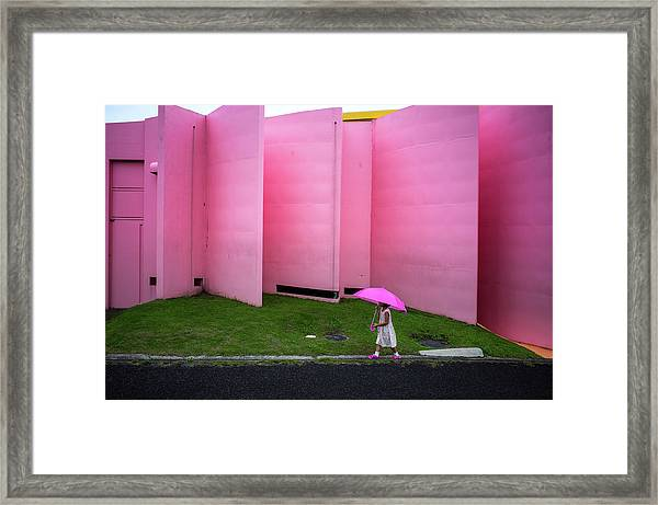 The Pink Color World Framed Print