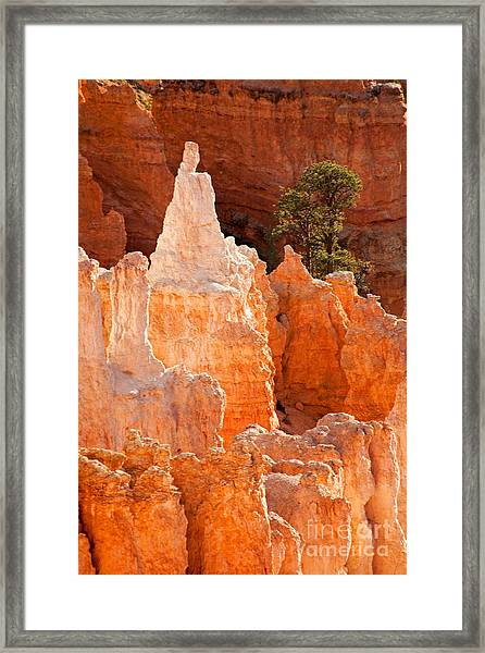 The Pope Sunrise Point Bryce Canyon National Park Framed Print