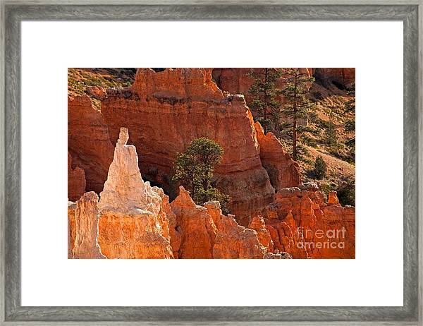 The Popesunrise Point Bryce Canyon National Park Framed Print