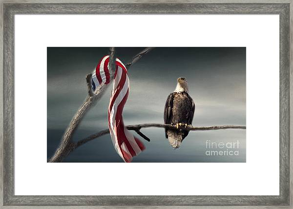 The Proud One Framed Print