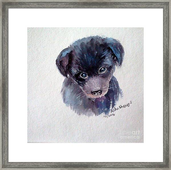 The Puppy Framed Print