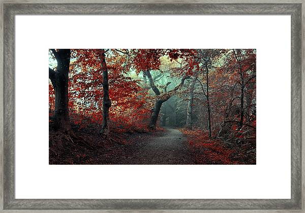 The Red Forest Framed Print