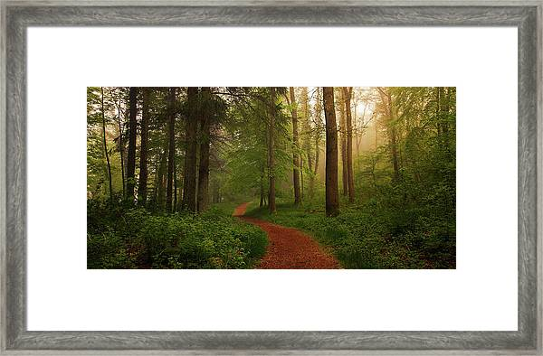 The Red Path. Framed Print by Leif L?ndal