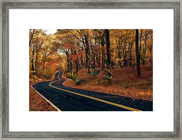 The Road Into Autumn Framed Print by Zev Steinhardt