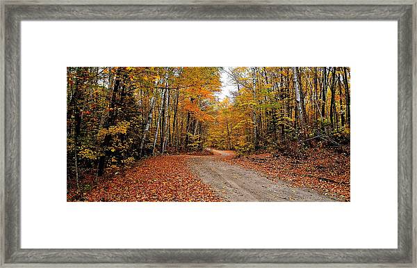 The Road We Take Framed Print