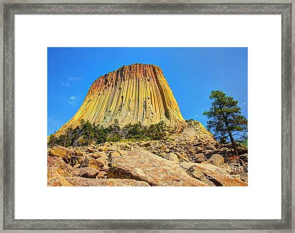 The Rock Shop Framed Print