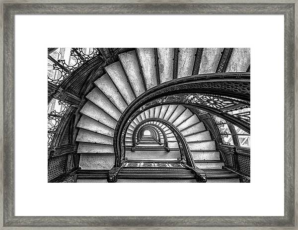 The Rookery Framed Print by Yimei Sun