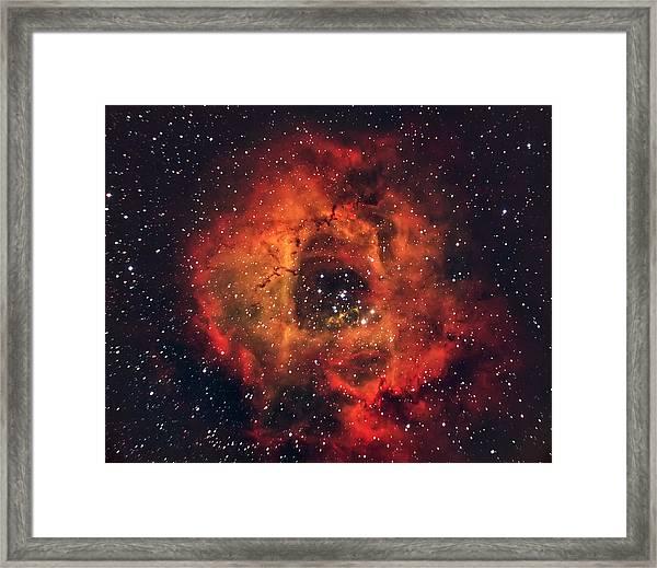 The Rose In The Sky Framed Print