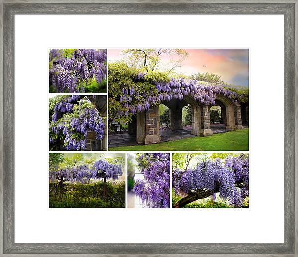 The Scent Of Spring Framed Print