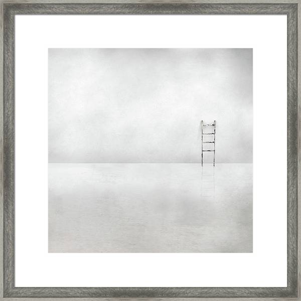 The Social Ladder Framed Print