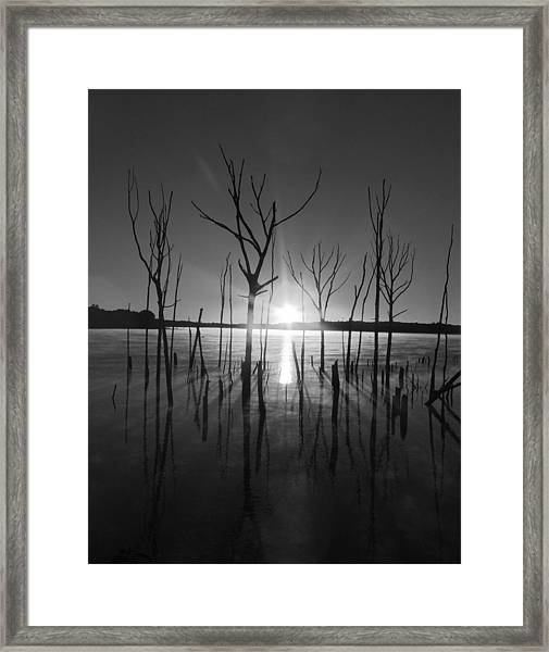 The Star Arrives Framed Print