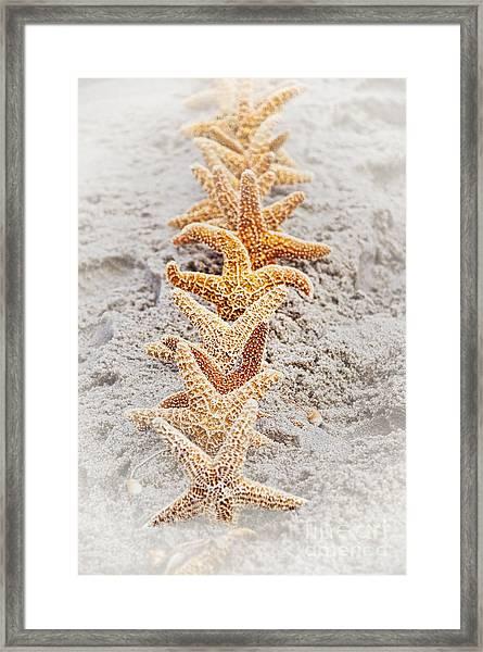 The Starfish Line Dance Framed Print