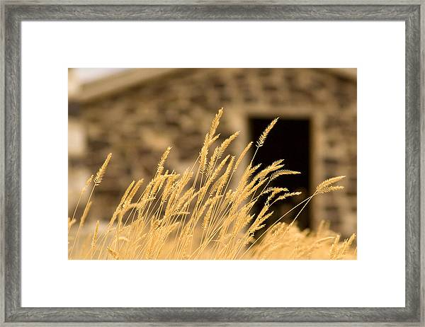 The Station Framed Print by Darryl Wilkinson