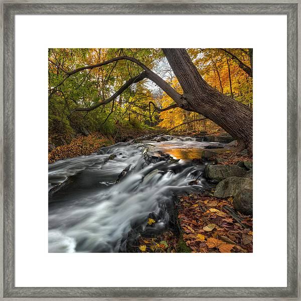 The Still River Square Framed Print