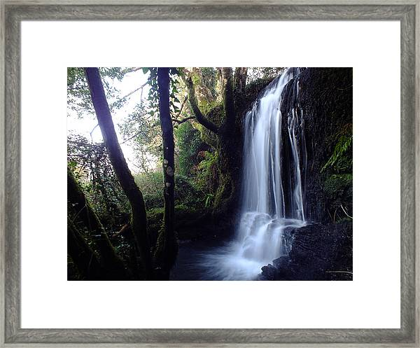 The Stream After Heavy Rain Framed Print