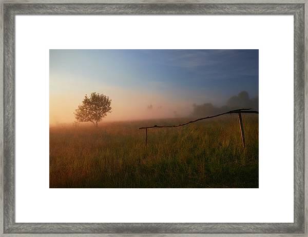 The Summer Field Framed Print by Krzysztof Mierzejewski