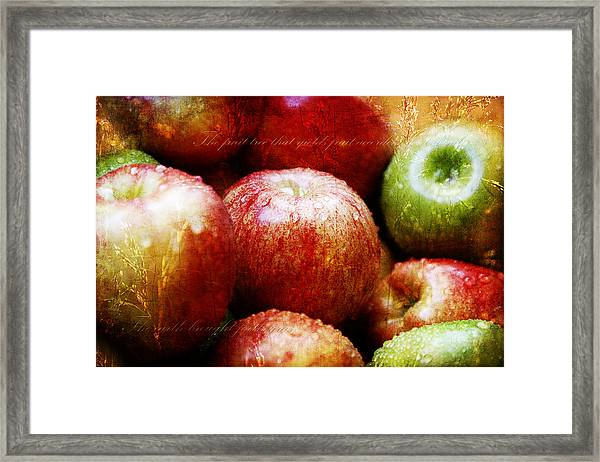 The Third Day Framed Print