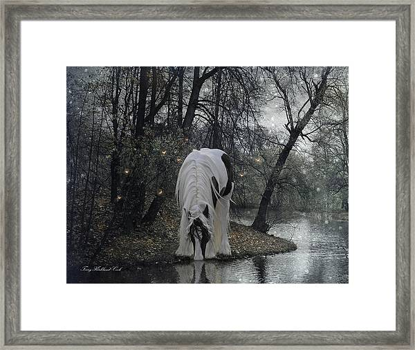 The Thirst Framed Print