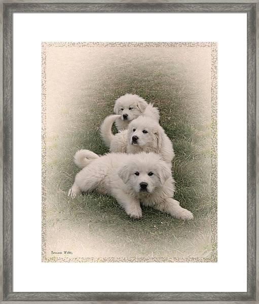 The Three Framed Print