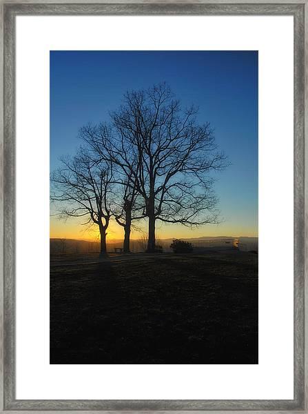 The Three Oaks Framed Print