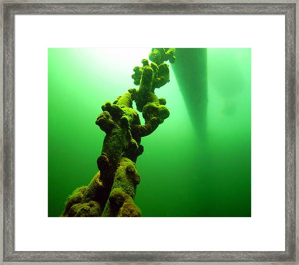The Throne Framed Print