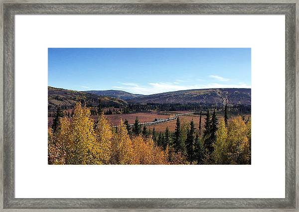 The Trans Alaska Pipline Framed Print