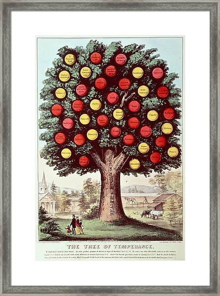 The Tree Of Temperance, 1872 Colour Litho Framed Print