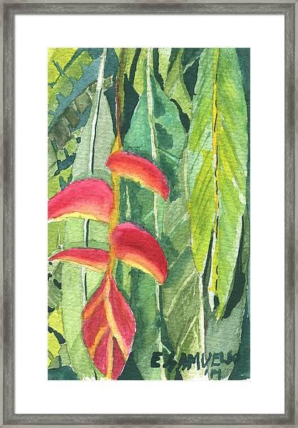 The Upside Down Flower Framed Print