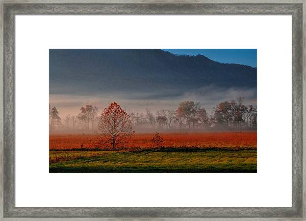 The Valley Framed Print