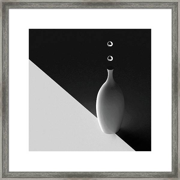 The Vase Framed Print