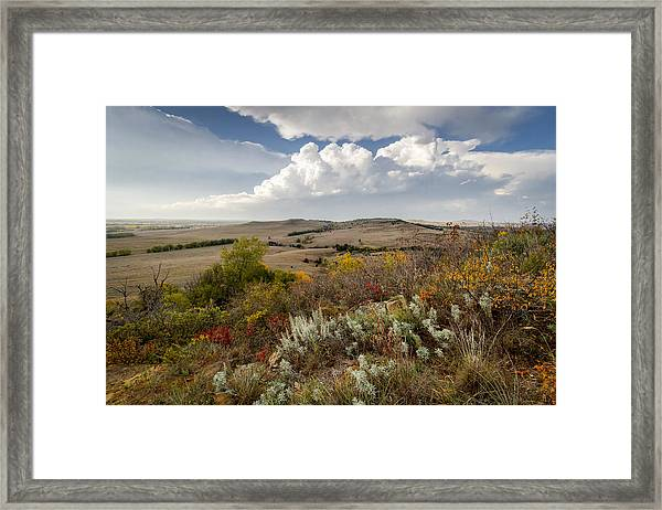 The View From Coronado Heights Framed Print