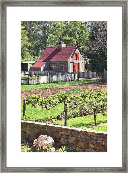 The Vineyard Barn Framed Print