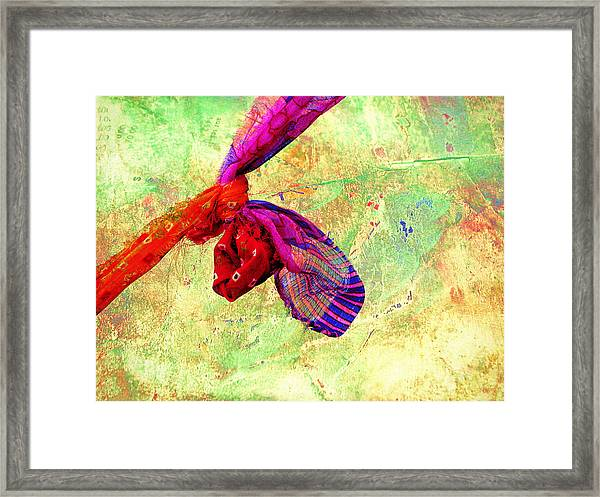 The Wedding Knot Framed Print
