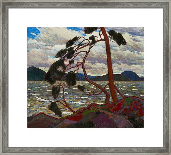 Framed Print featuring the painting The West Wind by Tom Thomson