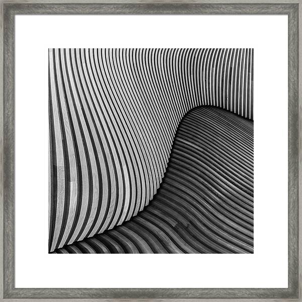 The Wood Project I - Tangled Wood Framed Print