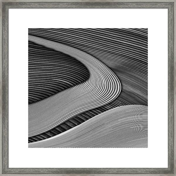 The Wood Project IIi - Zen Garden Framed Print