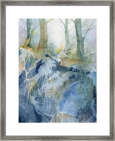 The Wood Framed Print