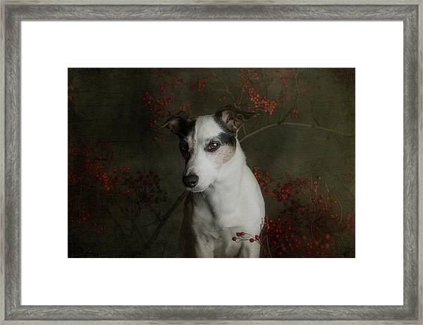 The Woods Are Lovely, Dark And Deep..... Framed Print by Heike Willers