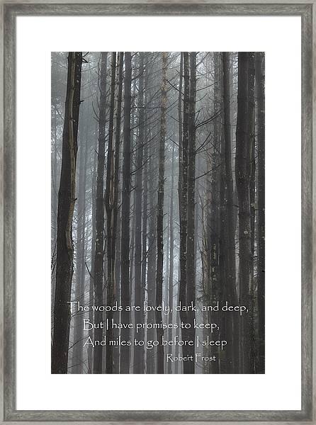 The Woods Framed Print