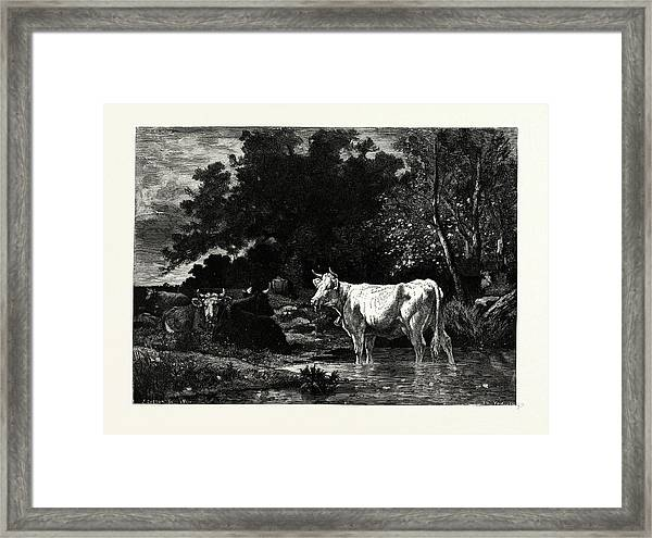 The Woodside Brook Framed Print