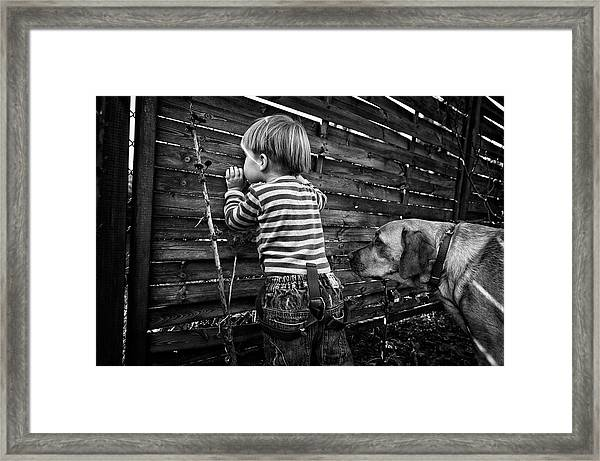 The World From Behind The Fence Framed Print