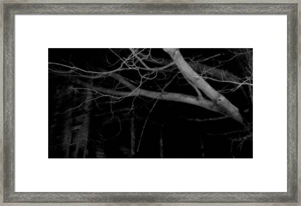 There In The Silence Framed Print