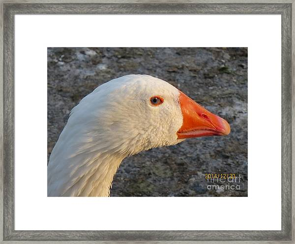 There Is Seing Me Framed Print