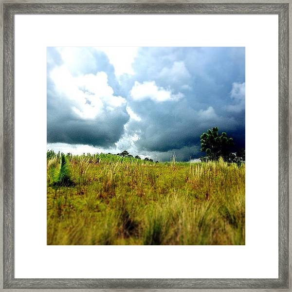 There's A Storm Brewing!!! #golf Framed Print