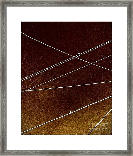 They Called To Me Framed Print