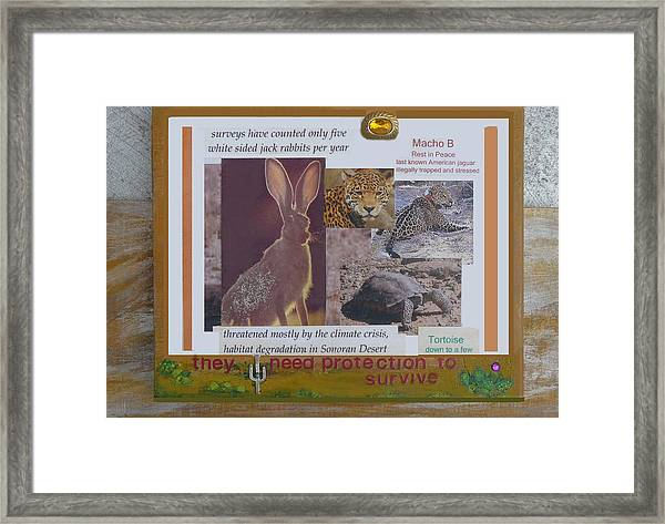 They Need Protection To Survive Framed Print