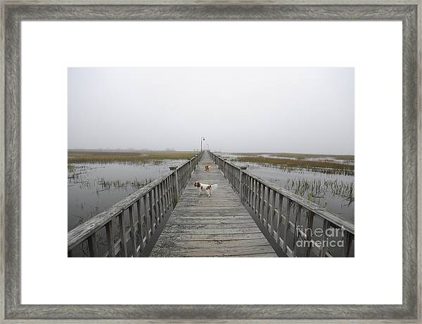Thick As Peanut Butter Framed Print