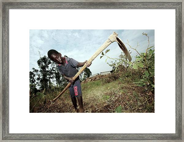Third World Agriculture Framed Print